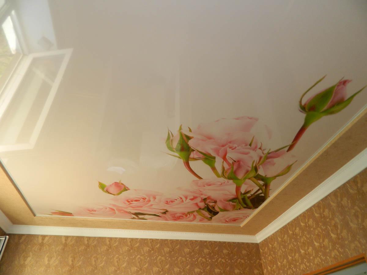 Натяжной потолок цветами фото
